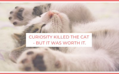 Curiosity Killed the Cat – But It Was Worth It